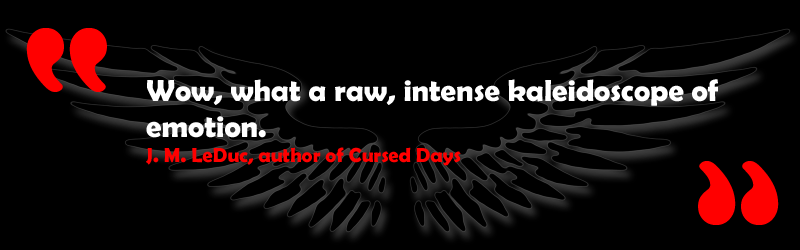 Wow, what a raw, intense kaleidoscope of emotion - J. M. LeDuc, author of Cursed Days, book three in the Trilogy of The Chosen